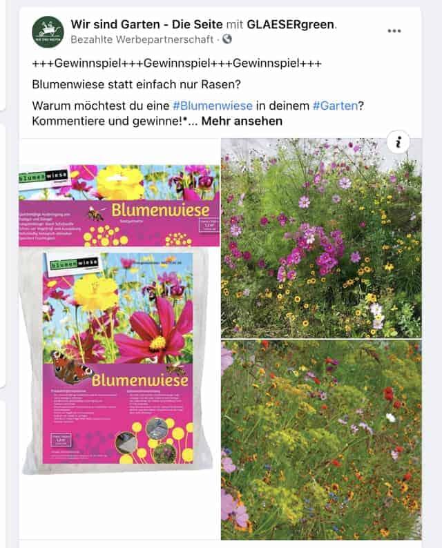 Blumenwiese-Gewinnspiel