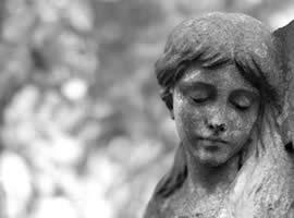 Facebook Gruppe Wir sind Garten - Grabpflege